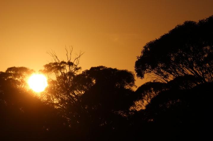 639c3-sunset