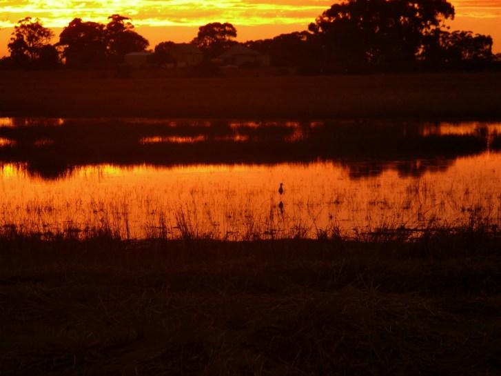 9138f-sunset