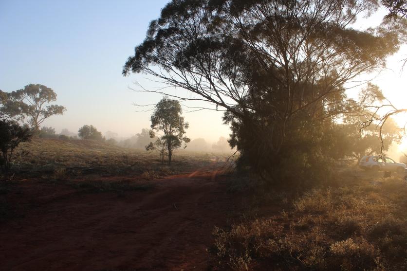 Round Hill, NSW